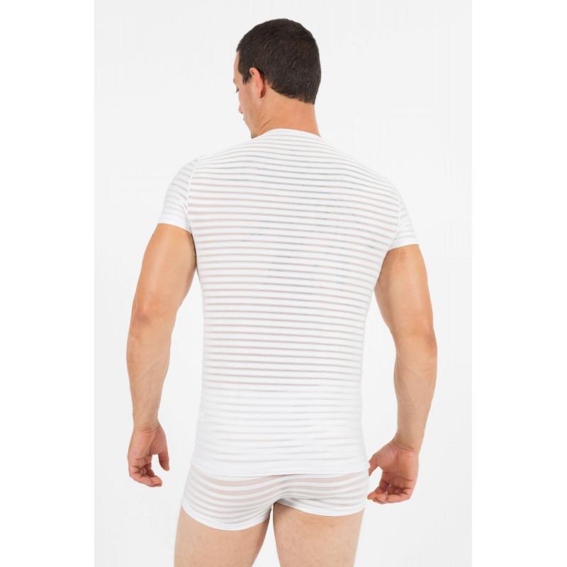 T-Shirt Wild Night  - LM59-81